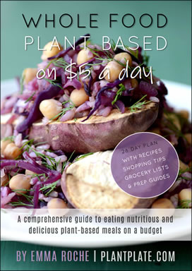 New eBook - Whole Food Plant Based on $5 a Day